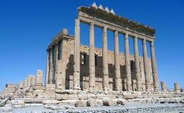 La Siria - Palmira fotografie stock libere da diritti