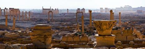 La Siria, Palmira Fotografia Stock Libera da Diritti