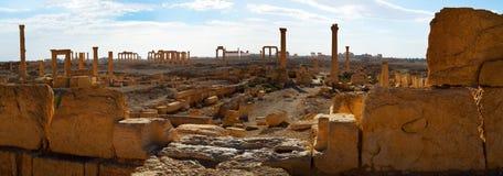 La Siria Palmyra Fotografia Stock Libera da Diritti