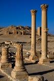 La Siria Palmyra Immagini Stock
