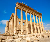 La Siria - Palmyra (Tadmor) Immagine Stock