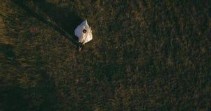 La situación de los pares en la montaña pintoresca en el bckg 4k de la salida del sol aéreo almacen de metraje de vídeo