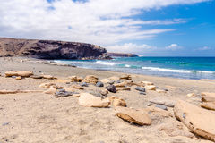 La skalad strand Fotografering för Bildbyråer