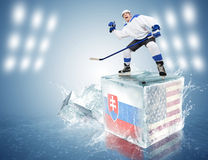 La Slovacchia - gioco di U.S.A. Giocatore di hockey Spunky sul cubetto di ghiaccio fotografia stock