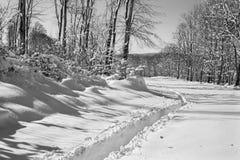 La Slovaquie - pays de route au printemps de Plesivecka Planina Image stock
