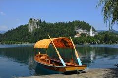 La Slovenia, sanguinata fotografie stock libere da diritti