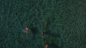 La société des amis détend et a l'amusement dans l'océan clips vidéos