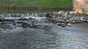 La soglia con acqua infuriantesi nel fiume stock footage
