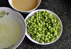 La soia fresca e la minestra di verdura fotografia stock