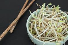 La soia germoglia in ciotola verde e bastoni di legno cinesi Immagini Stock Libere da Diritti