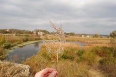 La soledad del otoño Imagen de archivo