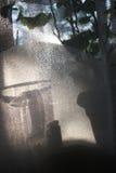 La sombra de las flores en la cortina Fotografía de archivo