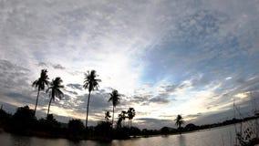 La sombra de los árboles de coco y agua con la reflexión del Sun y las nubes moverse rápidamente en el cielo metrajes