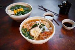 La sopa asiática tradicional con los tallarines, cebolla de la primavera, pollo de los ramen, cortó el huevo Imagen de archivo libre de regalías