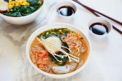 La sopa asiática tradicional con los tallarines, cebolla de la primavera, pollo de los ramen, cortó el huevo Fotos de archivo