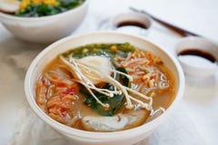 La sopa asiática tradicional con los tallarines, cebolla de la primavera, pollo de los ramen, cortó el huevo Foto de archivo