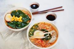 La sopa asiática tradicional con los tallarines, cebolla de la primavera, pollo de los ramen, cortó el huevo Fotografía de archivo