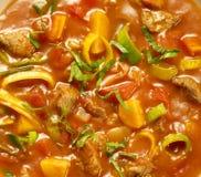 La sopa del tomate llenó de vegtables de la carne y de un adorno Fotografía de archivo libre de regalías