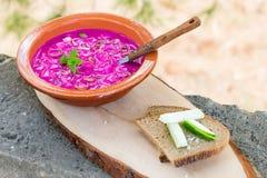 La sopa vegetal lituana tradicional fría del verano hizo de remolachas, del pepino, del eneldo, de la cebolla verde, y del kéfir  foto de archivo