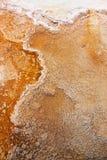 La sorgente di acqua calda di Yellowstone Mammonth Fotografia Stock Libera da Diritti