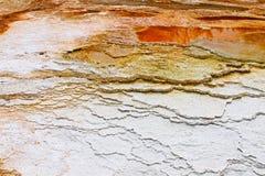 La sorgente di acqua calda di Yellowstone Mammonth Immagine Stock