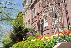 La sorgente fiorisce le case a schiera di Romanesque di Richardsonian Fotografia Stock Libera da Diritti