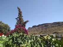 La Sorrueda on Gran Canaria stock images