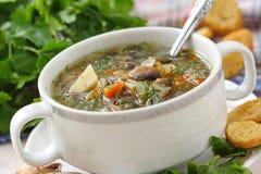La soupe avec des champignons et des légumes a servi au dîner Images libres de droits
