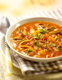 La soupe à tomate a rempli de vegtables de viande et de garniture de persil Image stock