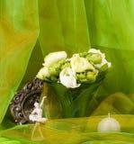 La source fleurit dans un vase et une trame en verre Photo stock