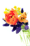 La source fleurit le bouquet Images stock