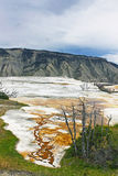 La source thermale de Yellowstone Mammonth Photos libres de droits