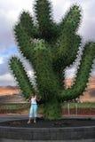 La Spagna, Lanzarote, Jardin de Cactus Fotografia Stock Libera da Diritti