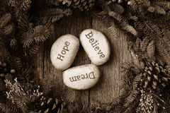 La speranza, sogno, crede in testo Immagine Stock Libera da Diritti