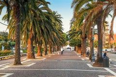 La Spezia, Ligurian region, Italy. LA SPEZIA, ITALY - AUGUST 08, 2015: Palm trees along the walkway in La Spezia, Ligurian region, Italy Stock Image