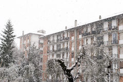 Snow in la spezia Royalty Free Stock Photos