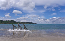 La spiaggia è nella baia del mare adriatico Fotografie Stock Libere da Diritti