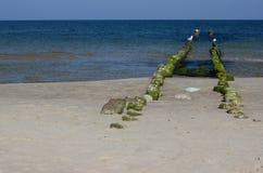 La spiaggia del Mar Baltico Fotografie Stock