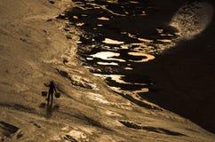 La spiaggia dell'argento del mare Immagini Stock Libere da Diritti
