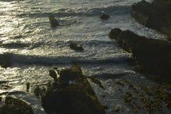 La spiaggia della costa Immagine Stock Libera da Diritti