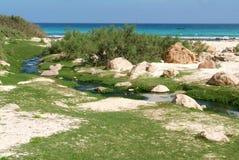 La spiaggia di Arher all'isola di Socotra Fotografia Stock