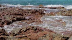 La spiaggia di Ibiza di conta di Cala, l'acqua bagnata del turchese oscilla in ibiza stock footage