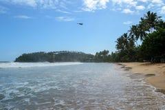 La spiaggia di Mirissa ad un giorno soleggiato fotografie stock libere da diritti