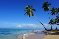La spiaggia di Punta Popy, Las Terrenas Immagine Stock