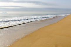 La spiaggia dorata dal mare fotografia stock libera da diritti