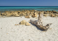 La spiaggia idilliaca Immagine Stock