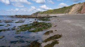 La spiaggia a primavera Fotografia Stock
