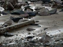 La spiaggia rocciosa Immagini Stock Libere da Diritti