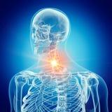 La spina dorsale cervicale royalty illustrazione gratis