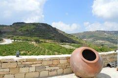 La splendeur des montagnes et du jeune vin photographie stock